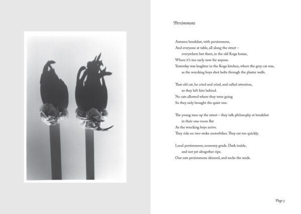 Ozasa (photo and poem)