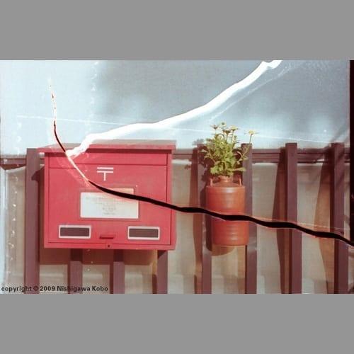 Cracked Mailbox