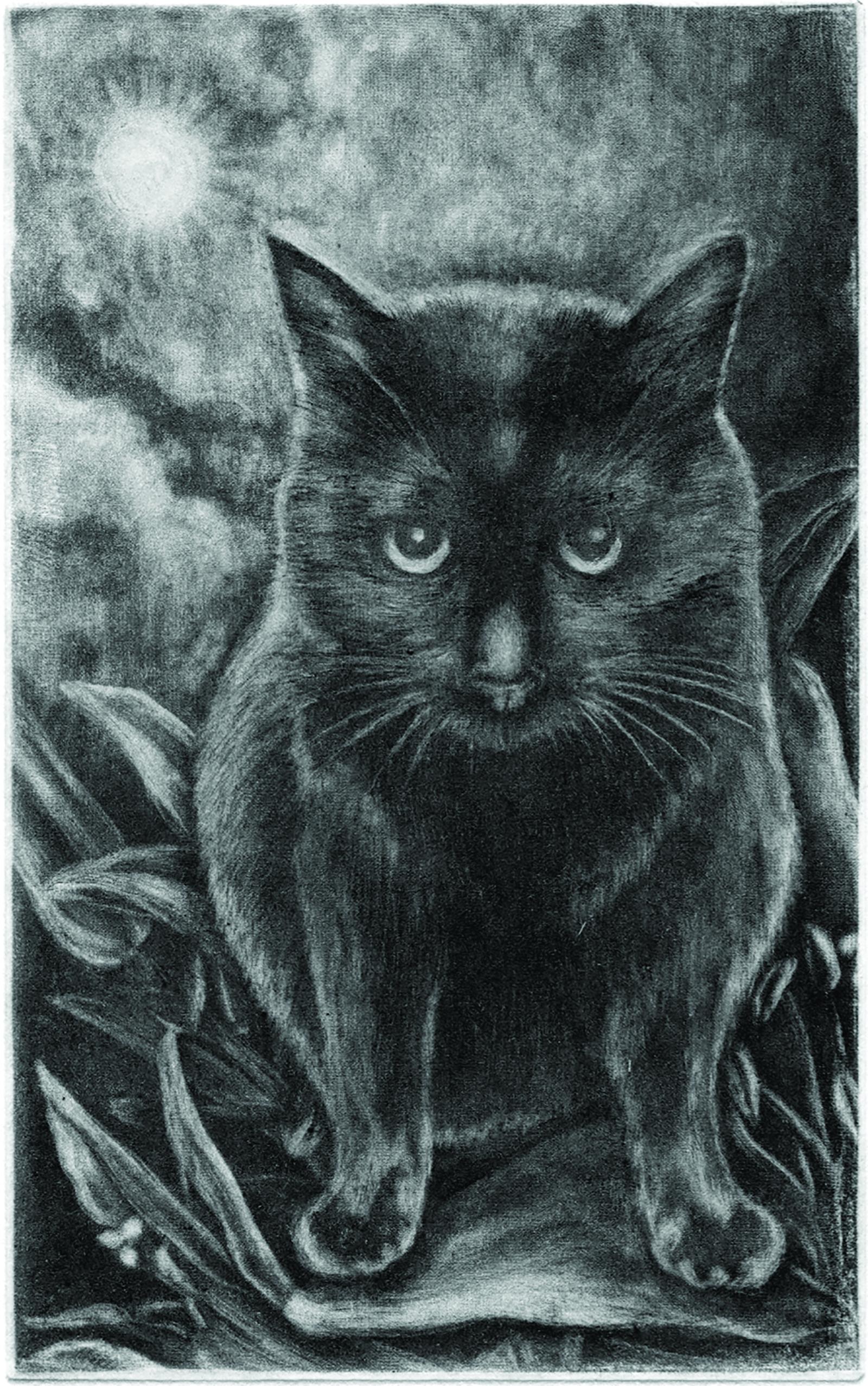 Kuro in black (drypoint etching by Yaemi Shigyo)