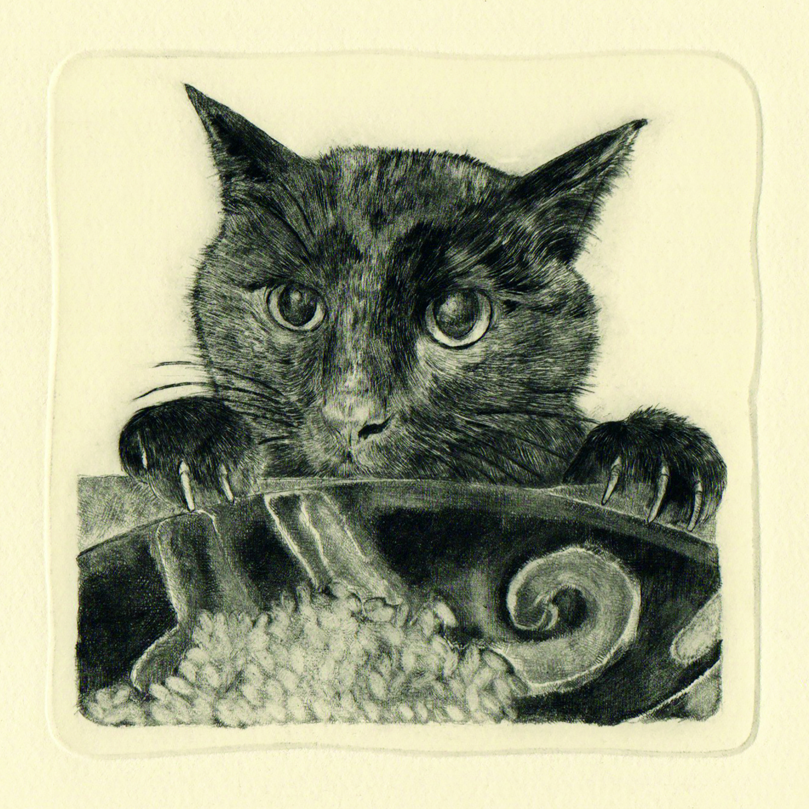 Kuro seriously thinks about his meal… (drypoint etching by Yaemi Shigyo)