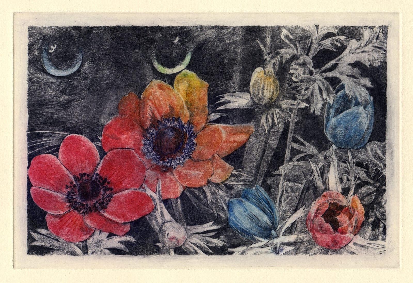Kuro and anemones (drypoint etching by Yaemi Shigyo)