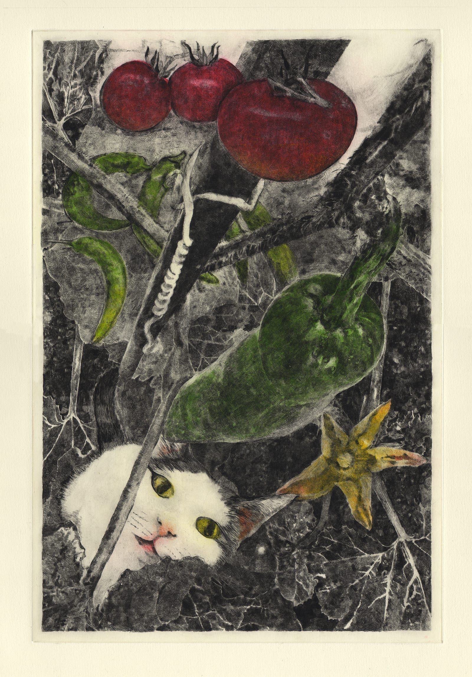 Summer vegetables (drypoint etching by Yaemi Shigyo)