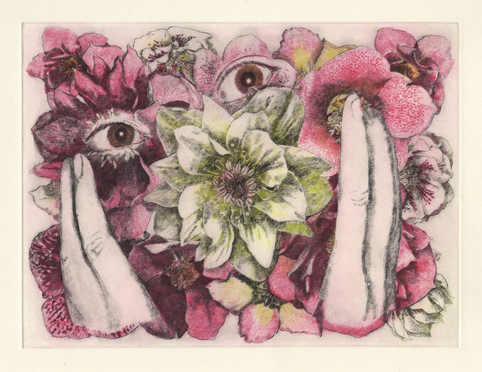 Christmas rose for anniversary (drypoint etching by Yaemi Shigyo)