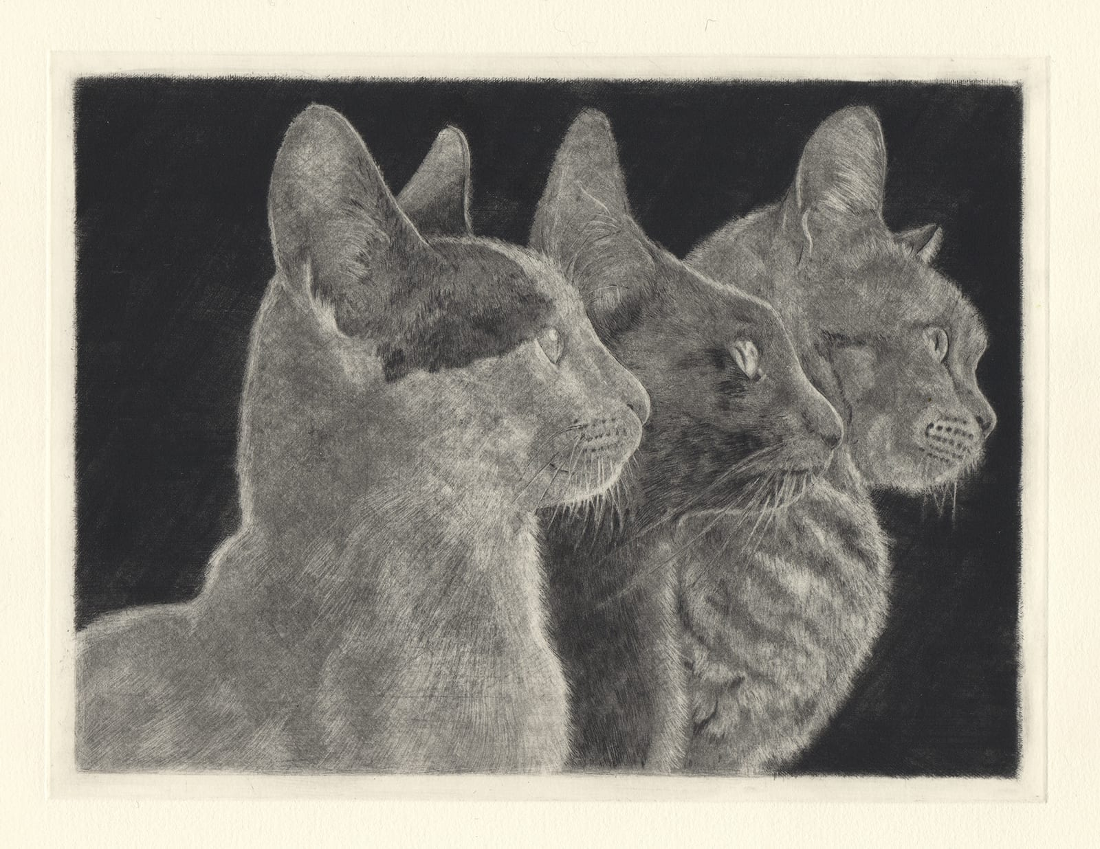 Seeing Farther (Generations) (drypoint etching by Yaemi Shigyo)
