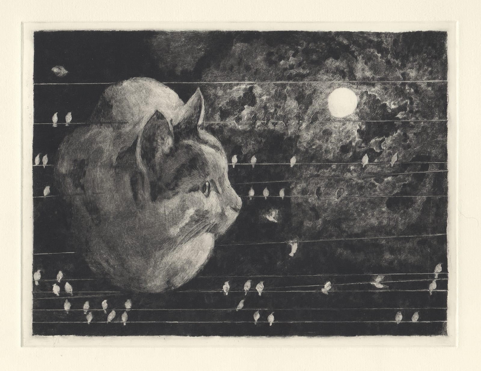 Hachi and wires (drypoint etching by Yaemi Shigyo)
