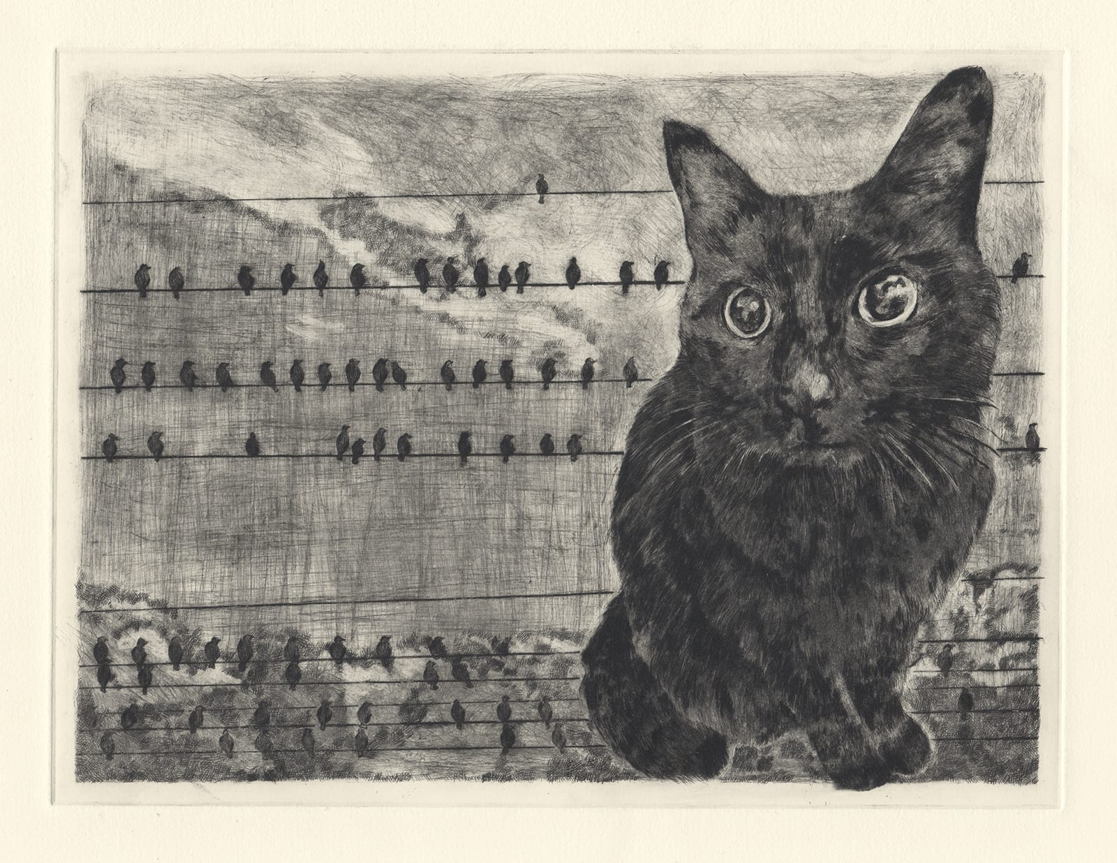 Kuro and wires (drypoint etching by Yaemi Shigyo)