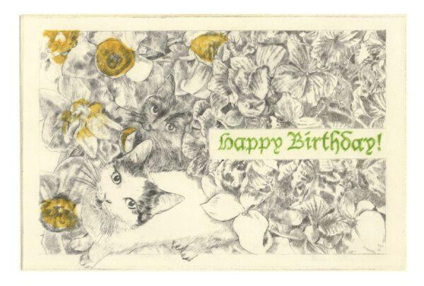 Happy Birthday postcard (front)