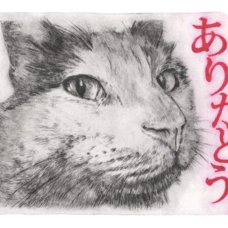 Hachitaro thanks for… postcard (front)