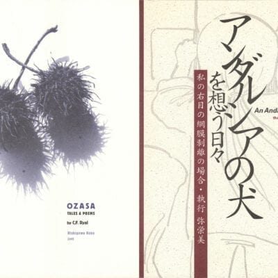 Nishigawa Kobo books set